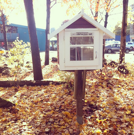 Little Free Library 8963